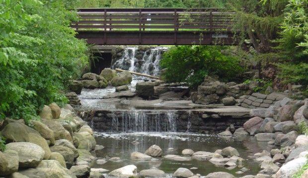Edwards Gardens - Toronto Botanical Garden