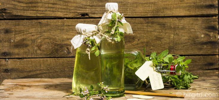 Selbstgemachter Zitronenmelisse-Sirup – erfrischend, aromatisch & gesund ♥
