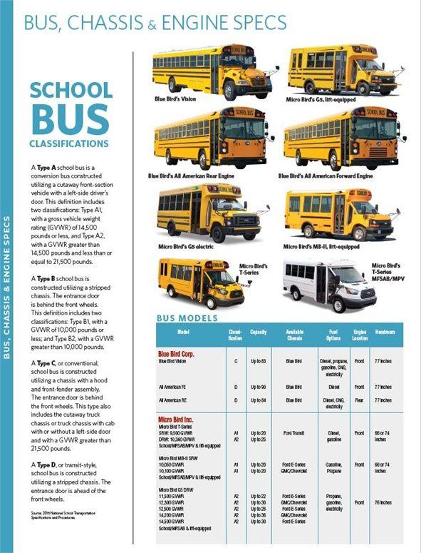 Types Of Bluebird Buses School Bus Service Bluebird Buses School Bus