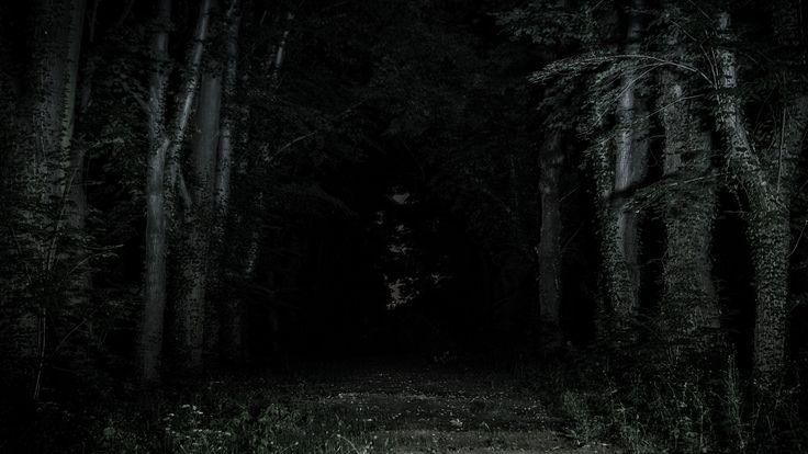 Noční fotografie Bohnického hřbitova bláznů. A night photography from the abandoned medmen's hospital cemetery in Bohnice.