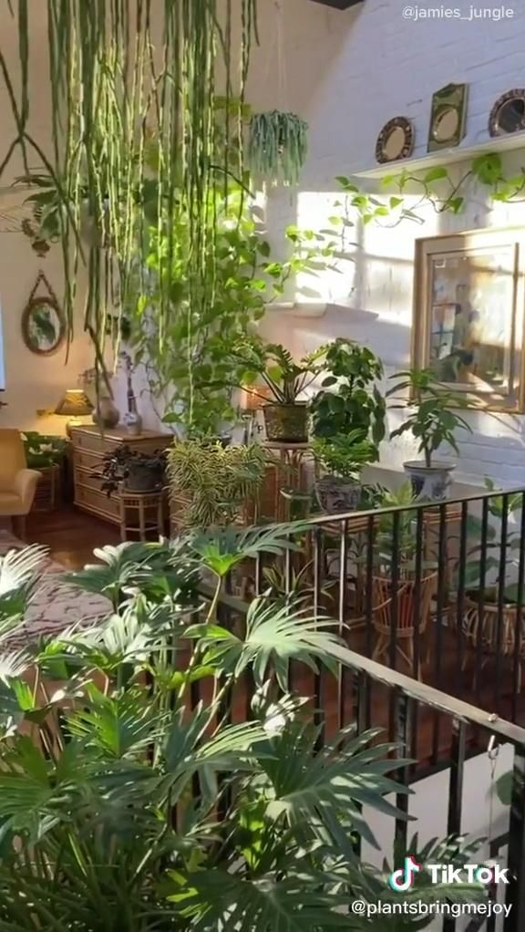 Pin On Muebles Hechos Small beautiful house plants