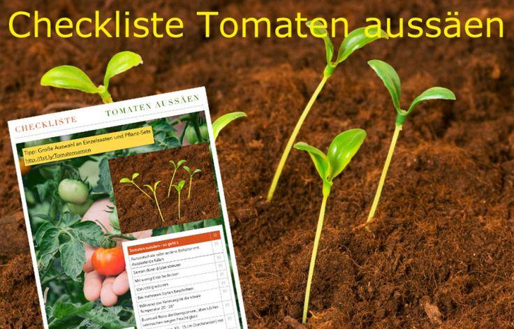 Checkliste Tomaten Aussaen Garten Tomaten Pflanzen Pinterest