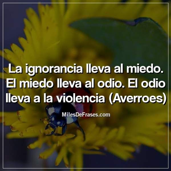 La Ignorancia Lleva Al Miedo El Miedo Lleva Al Odio El