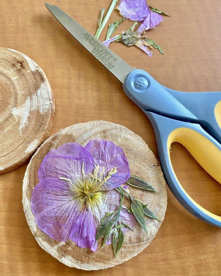 DIY Pressed Flower Coasters   Pressed flowers, Pressed flower crafts, Coasters