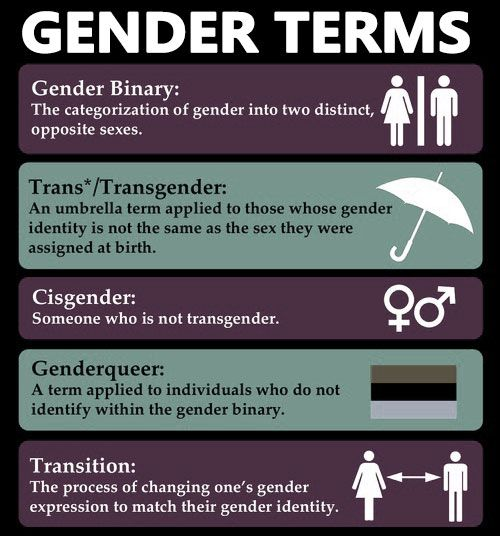 from Truman transsexual transgender glossary