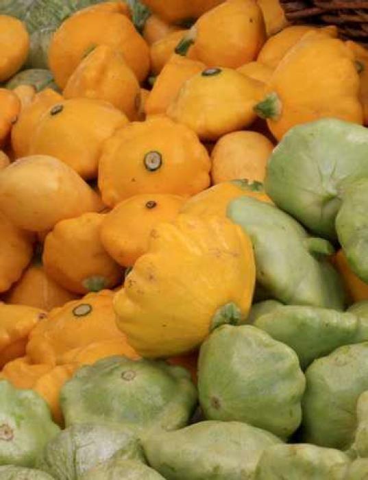 L'automne est la saison idéale pour cuisiner des cucurbitacées. Petite courge de forme aplatie, le pâtisson peut être blanc, vert jaune ou orangé. Nous vous proposons de découvrir une recette de pâtissons farcis et gratinés au four. par Audrey