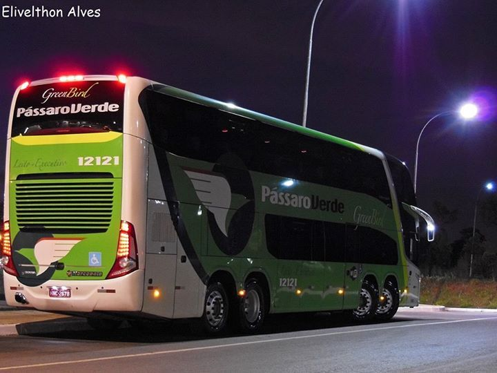 Ônibus rodoviário Pássaro Verde