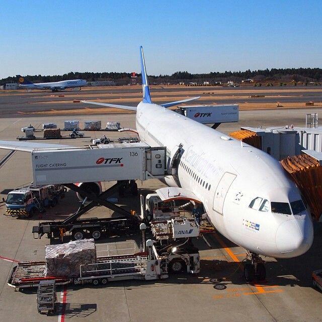 SAS A330 being turned at Narita @bjornpilot