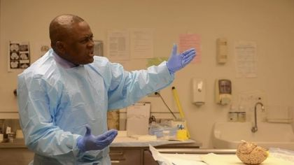 CTE    Scientists hunt for ways to untangle damage of chronic traumatic encephalopathy - Pittsburgh Post-Gazette