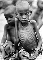 05 - Paradójicamente, en el umbral de estas maravillas aproximadamente catorce millones de niños mueren al año por enfermedades producidas por la desnutrición, y 800 millones de seres humanos están muy deficientemente alimentados.
