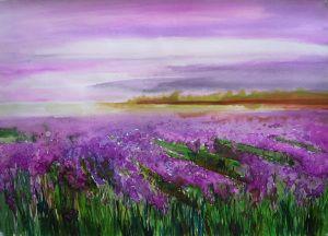 LavenderLandscape3