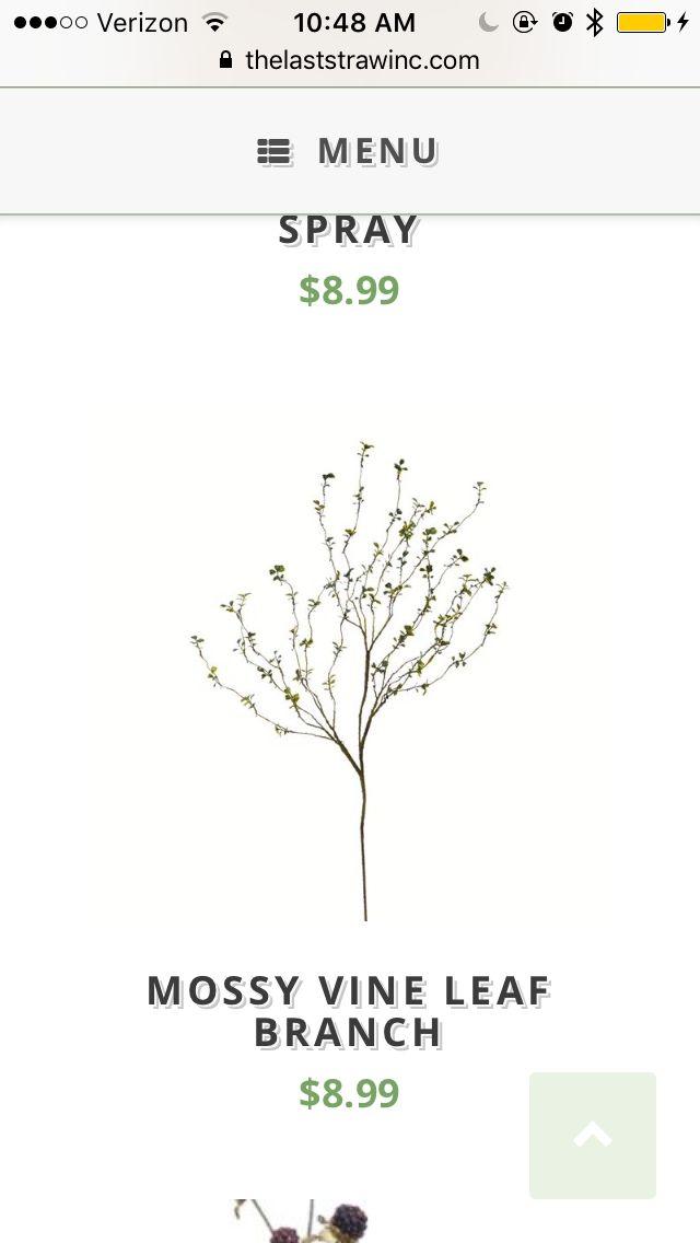 Pin by Casey Clark on Flower Ideas | Vine leaves, Spray, Vines
