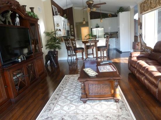 Safari Room Living Room Ideas Pinterest Safari
