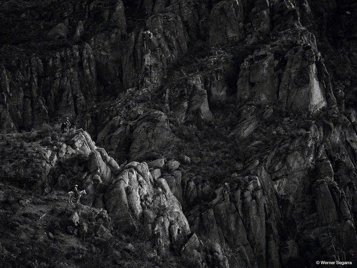 © Werner Segarra, Digital back: IQ180
