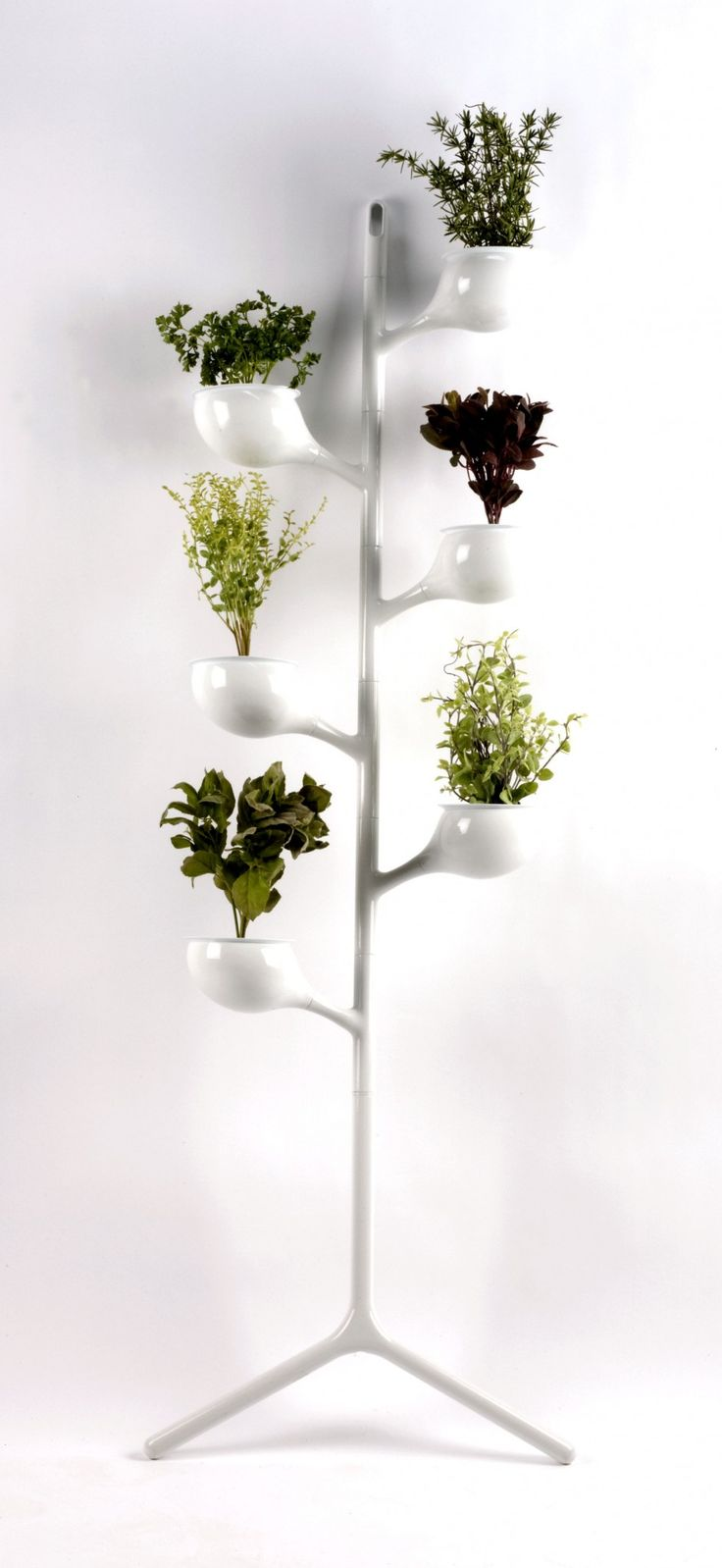 planter / Peter J. Pless at SaloneSatellite 2010