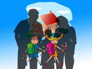 Roles of Special Education Parents