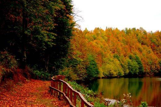 Ulu Lake Nature Park-Ordu-Turkey