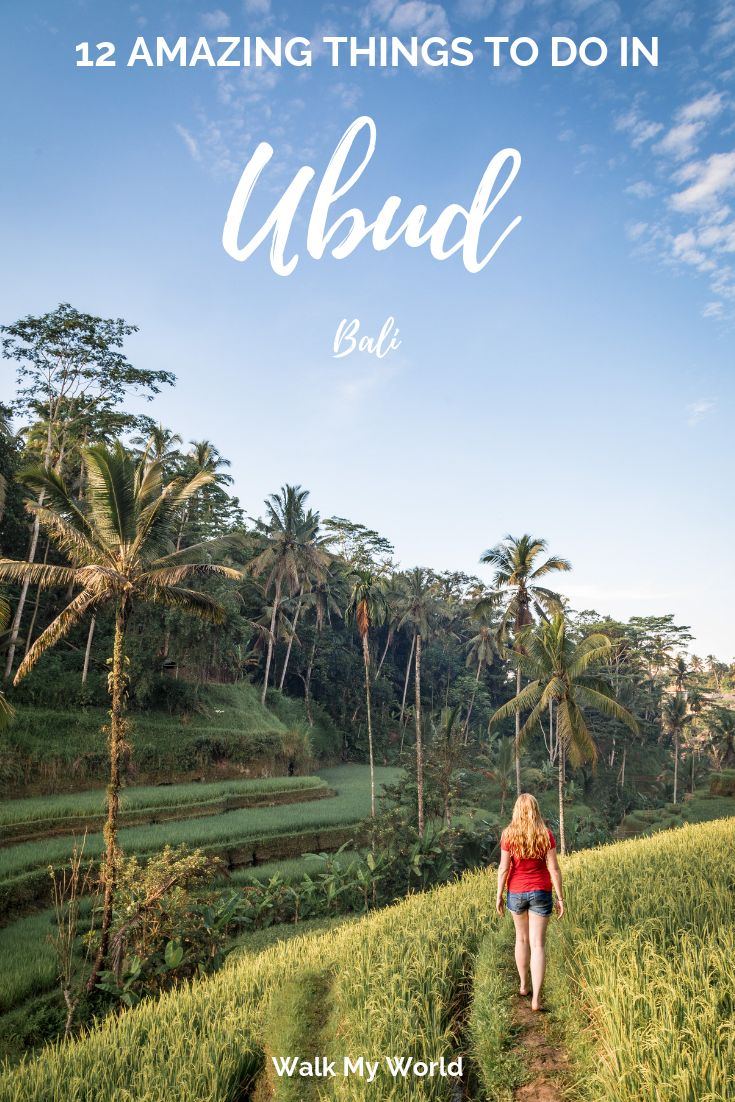 No trip to Bali is complete without visiting Ubud….
