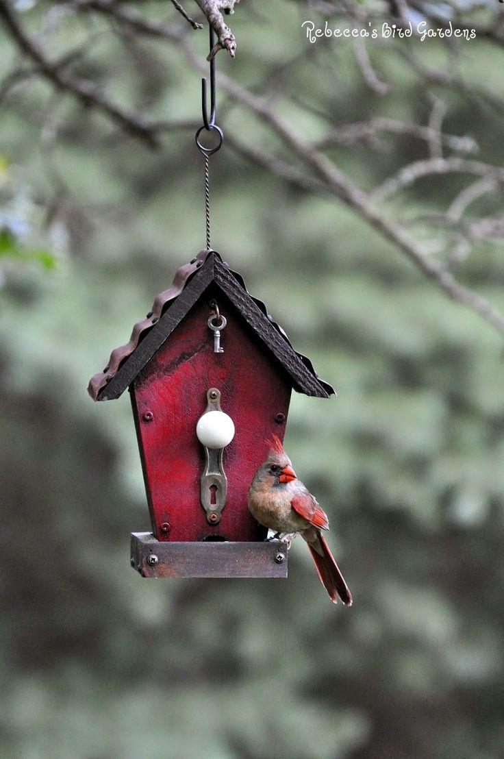 best 25 cardinal bird house ideas on pinterest