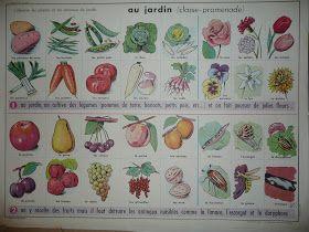 Manuels anciens: Au jardin (fruits, légumes, fleurs, animaux)