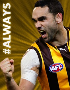 The Hawks unleash their online digital campaign for fans.