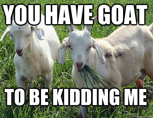 You have goat to be kidding me - really bad goat memes and jokes!!