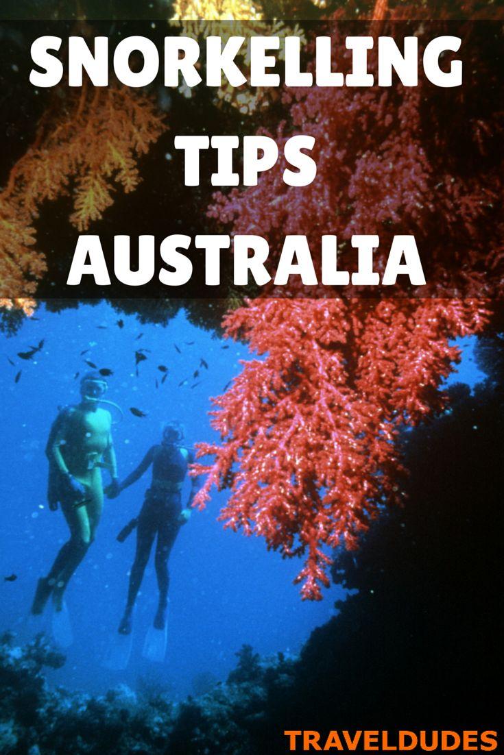 Snorkelling along the Great Barrier Reef in Australia | Traveldudes.org Travel Blog