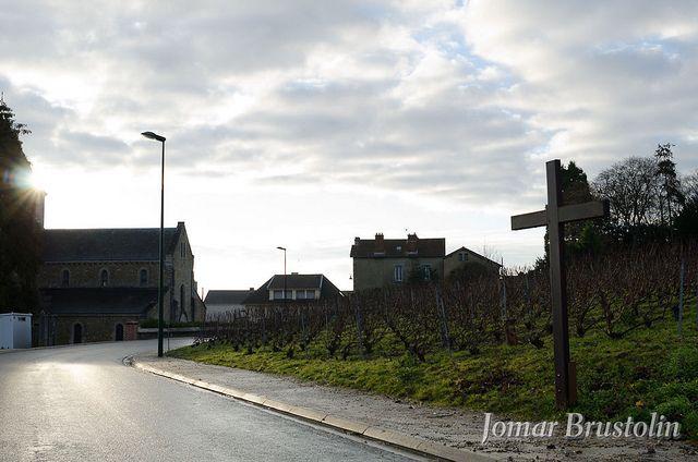 Le Mesnil sur Oger - France | Flickr – Compartilhamento de fotos!
