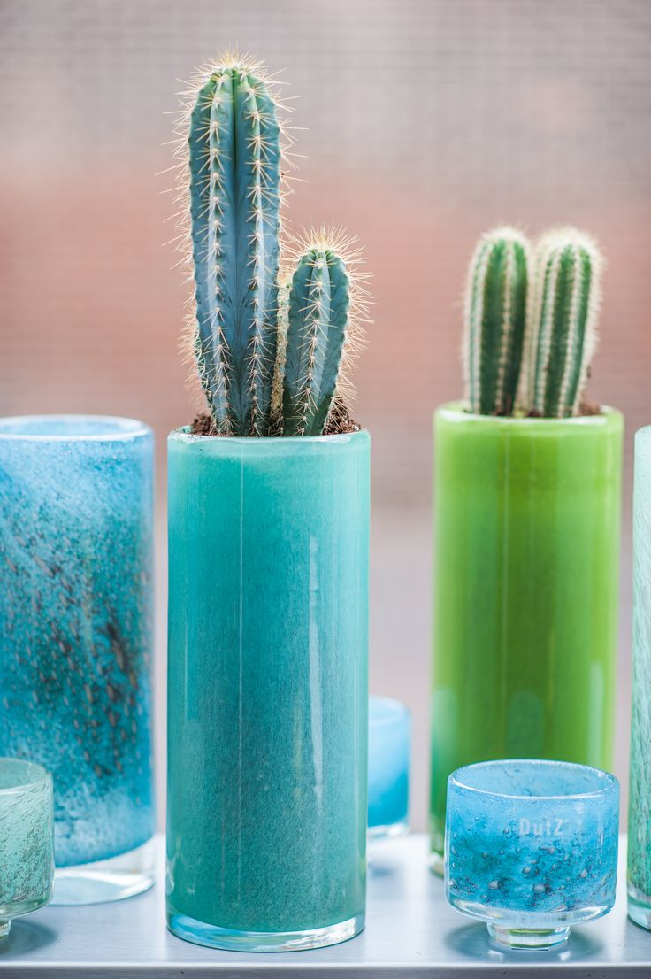 Cilinders and DIVA vases in blue and green