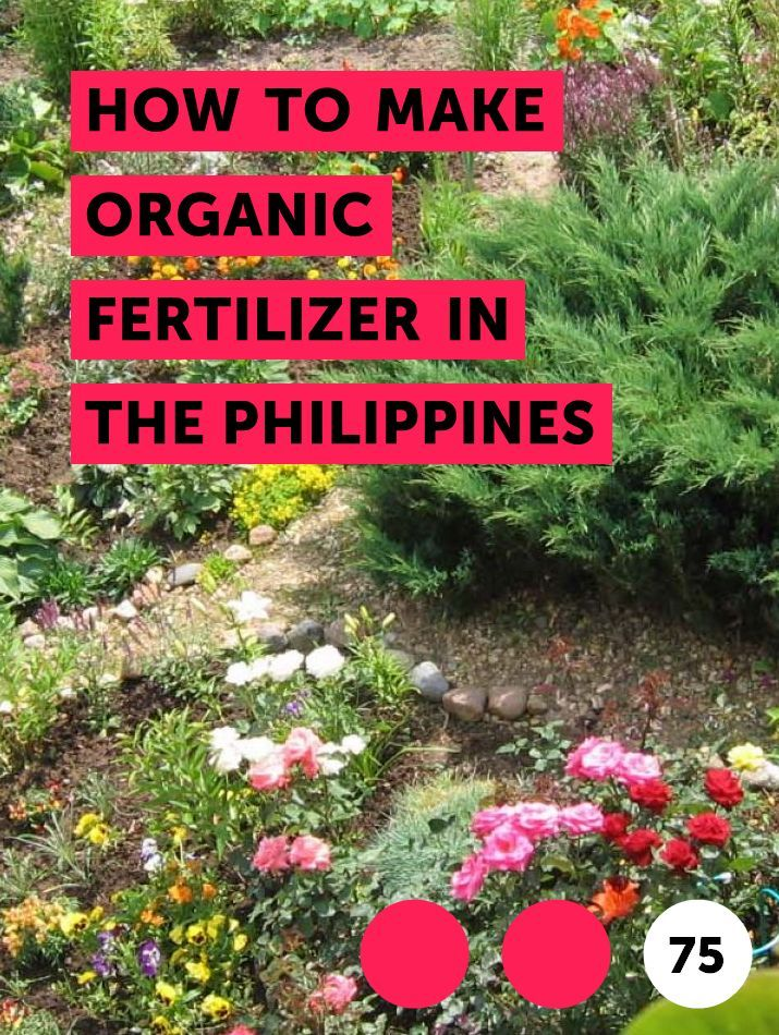 Learn How To Make Organic Fertilizer In The Philippines How To Guides Tips And Tricks Dogwood Trees Plants Catawba Tree