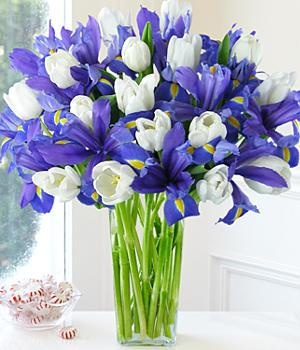 Yep... iris, white tulips...throw in a few daisies (pink gerbera?) and it's my perfect bouquet.