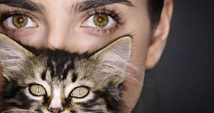 """Michelle Renaud on Instagram: """"@uninovelas : """" Los chicos de #PasionPoder resultaron ser amantes de los gatos. ¡Mira sus mininos amigos! """" vía #Twitter"""""""
