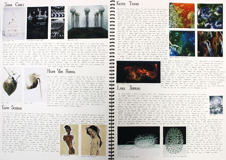 """Page from A2 sketchbook """"Under the Microscope, Beneath the Skin"""", biological art research"""