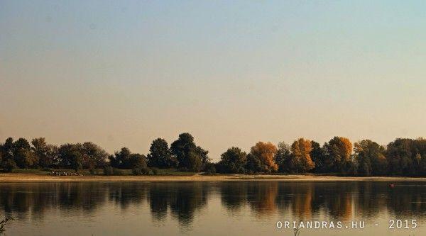A #Duna -  A múlt #hétvége egyik legérdekesebb fotója lett az alábbi kép. A délelőtti éles napfényben különösen csillogott a solti Duna part a vízre éppen egy csomó tehén érkezett. A keresőbe nézve eszembe jutottak a nagyszüleim falán látott régi metszetek a Dunáról ezt a hangulatot próbáltam reprodukálni.  A Duna - oriandras.hu #weekend #hungary #danube #autumn
