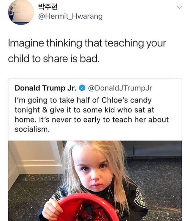 Donald Trump Jr, a chip off the old rotten block. And he couldn't define, democracy, socialism, a republic, or a banana republic if his life depended on it.