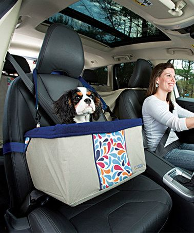 Loving this Color Splash Pet Booster Seat on #zulily! #zulilyfinds