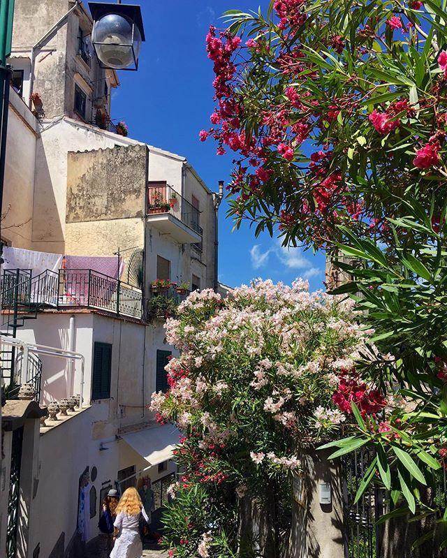 A typical summer day in Positano💕 Photo by me @christinatan1 . .  #sassychris1italy #yallerscampania #yallersitalia #amalfi #amalficoast #italy #positano #ravello  #naples  #pool  #summer #beach #vacation #capri  #italy #italy_vacations #europe_vacations #ig_italy #ig_italia  #italytravel #ig_europe #ig_europa #vivo_italia  #praiano #naples #luxury #holiday  #best_amalficoast