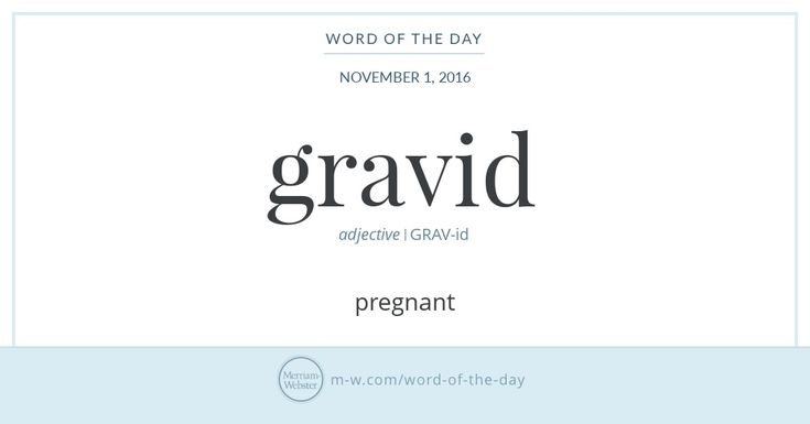 Word Of The Day: Grok | Merriam Webster, English Words And Beautiful Words