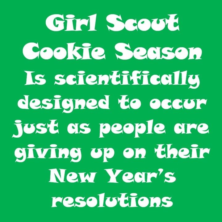 68 best images about girl scouts on pinterest brownies