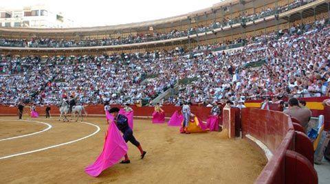 Elige al triunfador de Fallas #Valencia #Fallas #encuesta #opinion - mundotoro.com