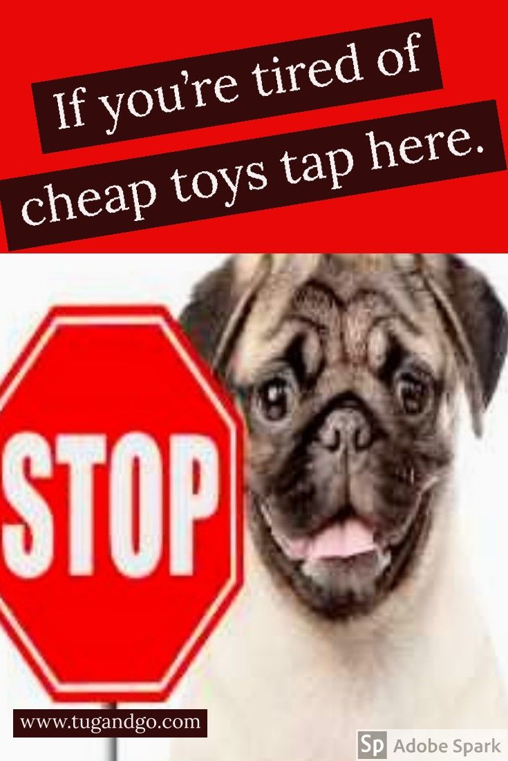 Pin By Kareem Wright On Words Dog Toys Dog Toys Indestructable