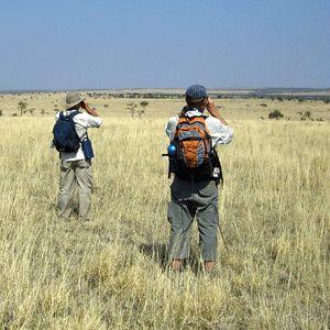 Serengeti Walking Safaris, Tanzania