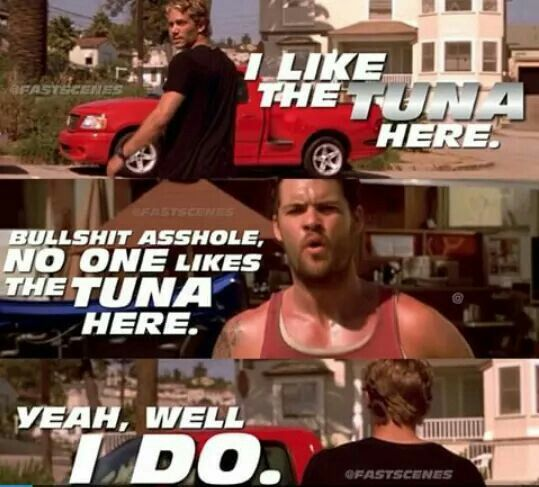 Vince & Brian // The Fast and The Furious