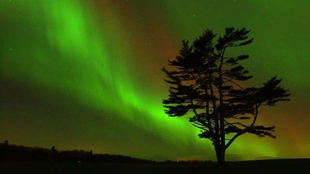 Alberta Sky Aurora Tours