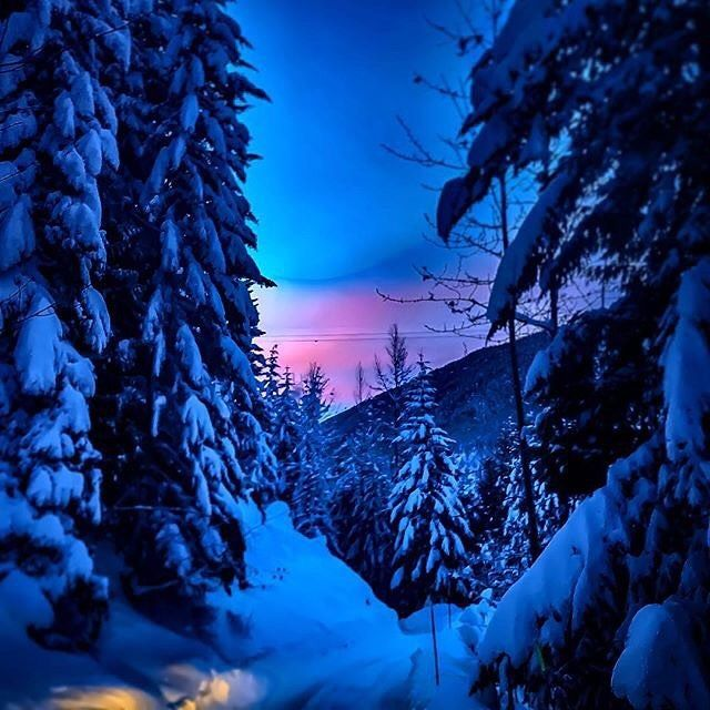 A Twilight Tour looking pretty in pink! 🌄 Book yours today: http://bit.ly/2CGB0JH  .   #ZiptrekLife photo by @kingfisherblueproductions .  .  .  #OnlyInWhistler #whistler #cottoncandyclouds #beautifulbc #twilight #pnw #explorebc #explorecanada #winterwonderland