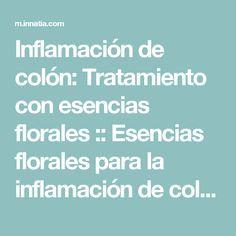 Inflamación de colón: Tratamiento con esencias florales :: Esencias florales para la inflamación de colon