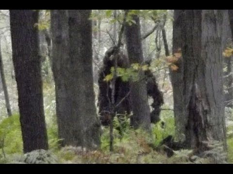 Bigfoot video as seen in 2nd Survivorman Bigfoot with Les Stroud - YouTube