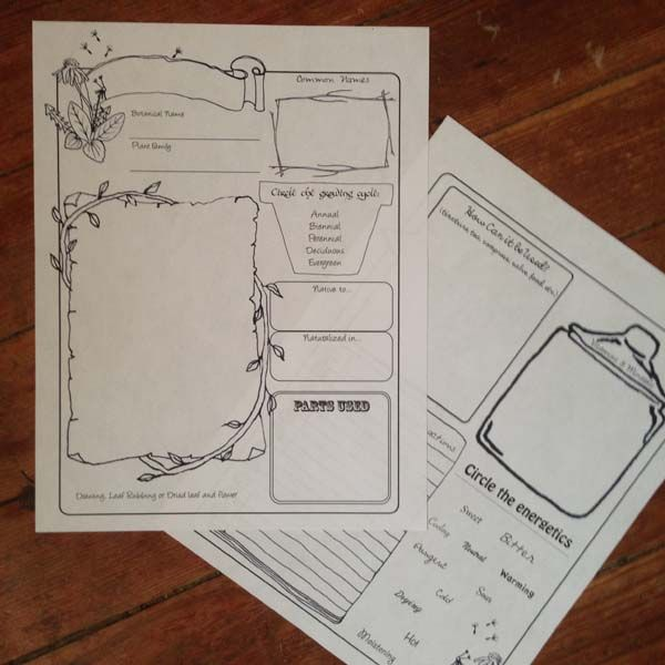 *NEW* Herbal Profile Template – A 2 page herbal profile template for reviewing each herb. Great for homeschoolers who like to do note booking, or anyone who would like to keep a shortened version, similar to a herbarium but more kid friendly.  FREE