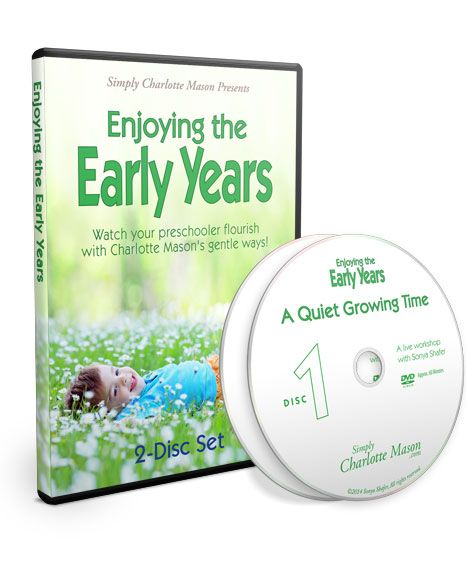Discover how to create a quiet growing time for your preschooler. This 2-disc DVD set, recorded at a live workshop, outlines practical ideas for instilling good habits, nurturing your child's heart and mind, and teaching him or her how to read.