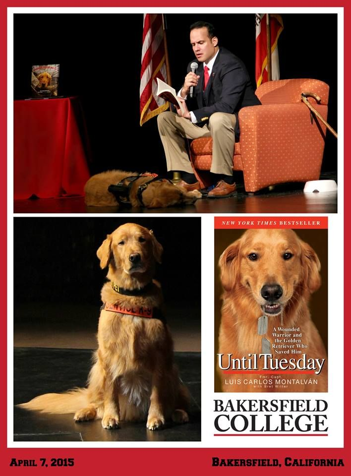 Until Tuesday: A Wounded Warrior and the Golden Retriever Who Saved Him with Tuesday in California ~ It was an honor and pleasure visiting and participating in Bakersfield College's (Bakersfield, California) programming!  (Photographs © 2015 - Manuel De Los Santos)
